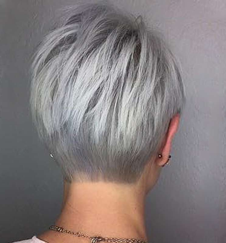 Short Hairstyle Grey Hair - 3