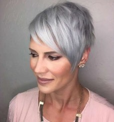 Short Hairstyle Grey Hair - 4