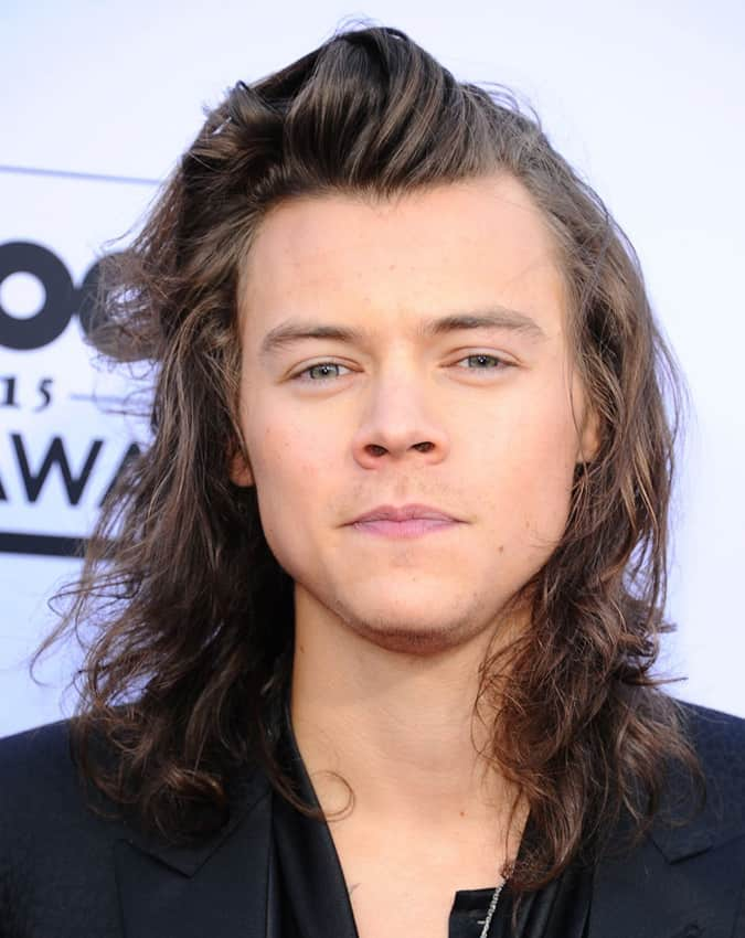 Harry Styles Long Hairstyle