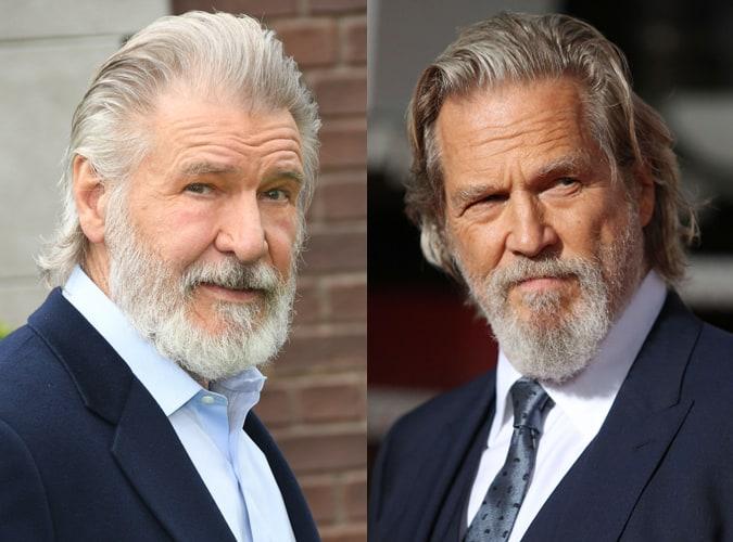 Celebrity Long Length Grey Hairstyles