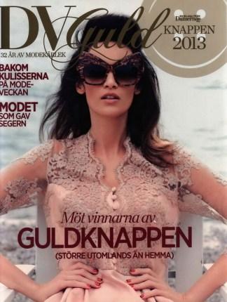 DV Guldknappen 2013