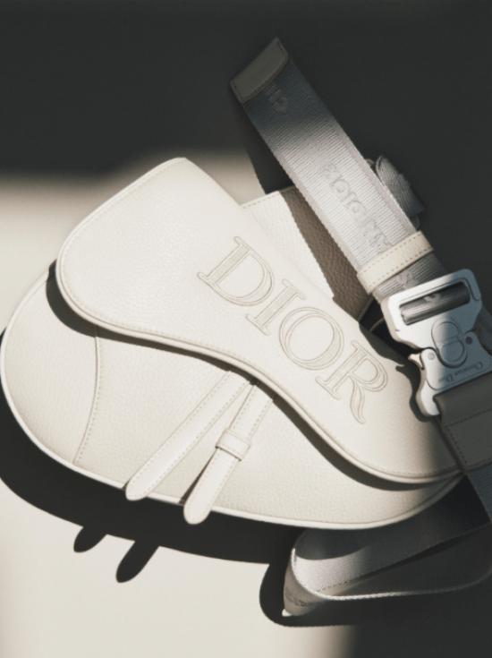 bolsa masculina tipo pochete da Dior