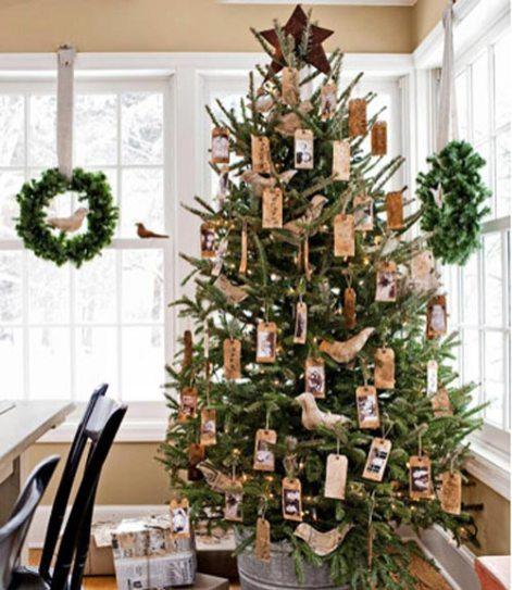 54eb1be84530a_-_christmas-tree-mollica-xl