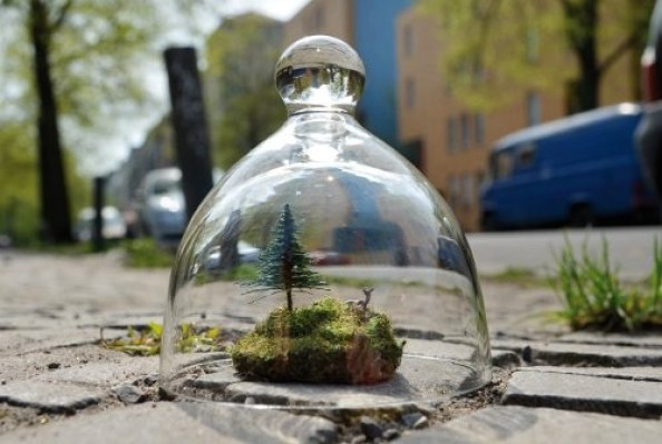 "Projekt ""Biotop - Utopia"""