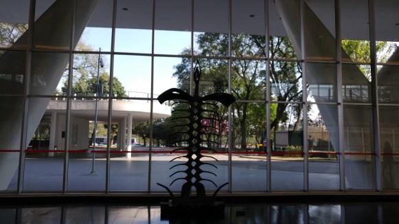 Museu de Arte Contemporânea da USP - MAC - Guilherme Sausanavicius 1