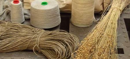 Imagem com plantas de linho e fios tecidos da fibra