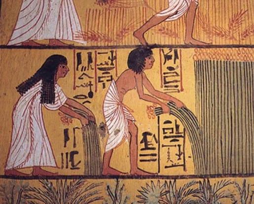 Ilustração egípcia mostrando a colheita de linho na Tumba de Sennedjem do antigo Egito