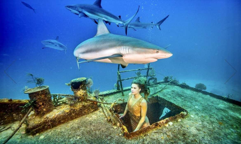 Karina Oliani com tubarões ensaio