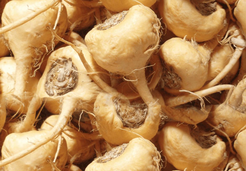benefícios da maca peruana