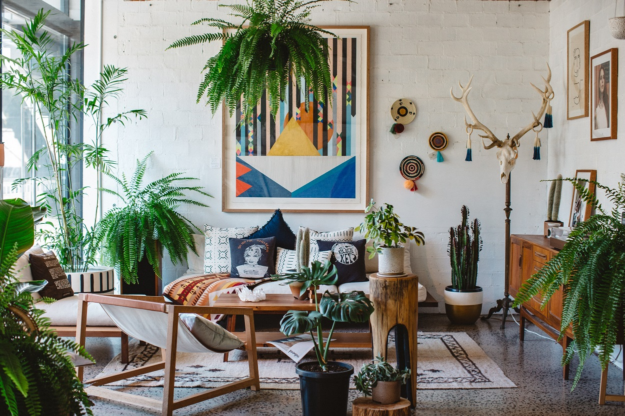 sala de estar decorada com o conceito de selva urbana