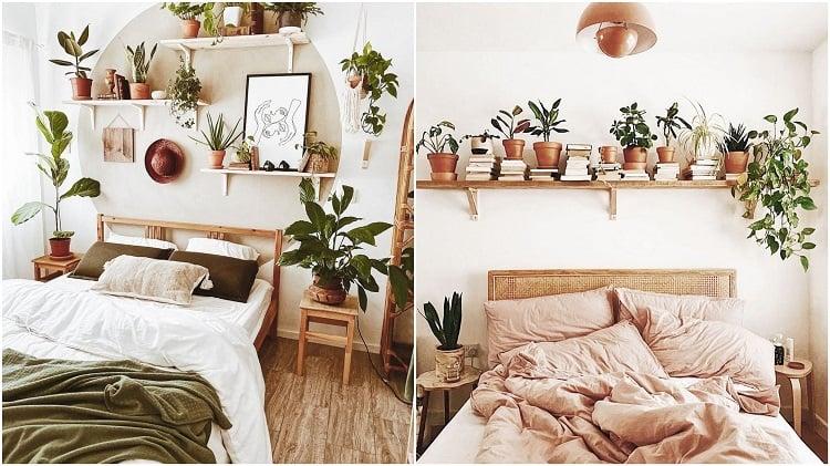 prateleiras com plantas nas cabeceiras de duas camas de casal