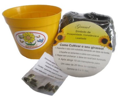 Mini presente eco prosperidade com kit contendo sementes de girassol
