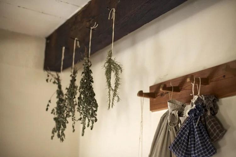 ervas penduradas para secar