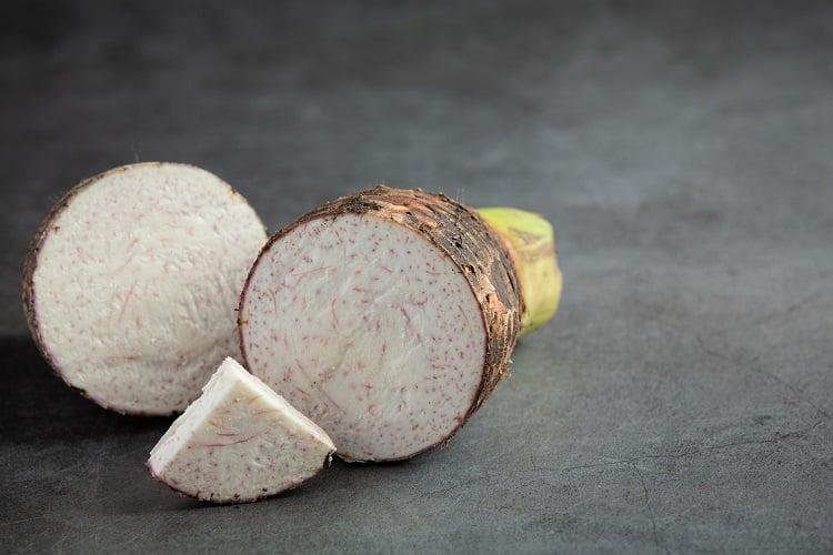 rizoma cortado ao meio
