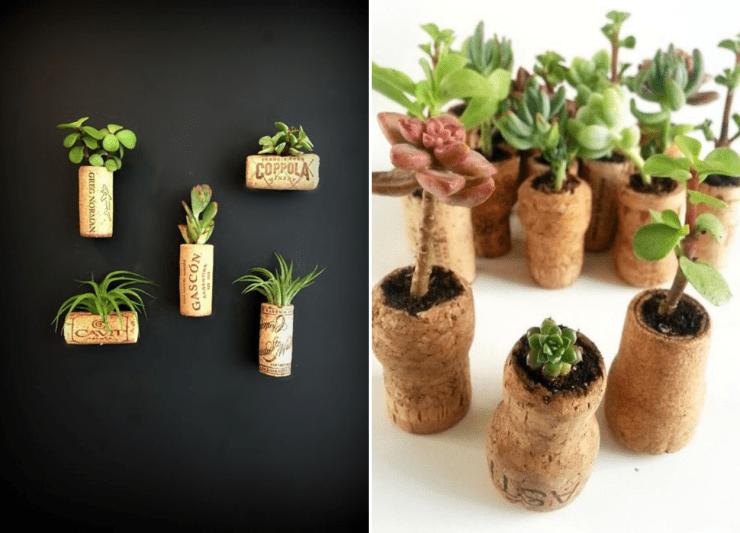 Lembrancinhas DIY: suculentas em rolhas de vinho