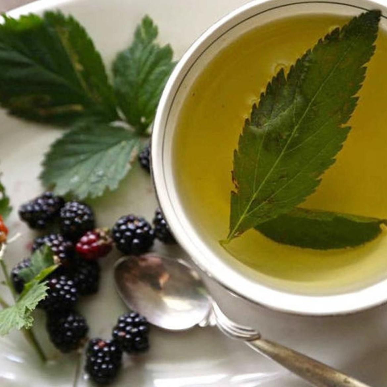Chá de folhas de amoreira para menopausa.