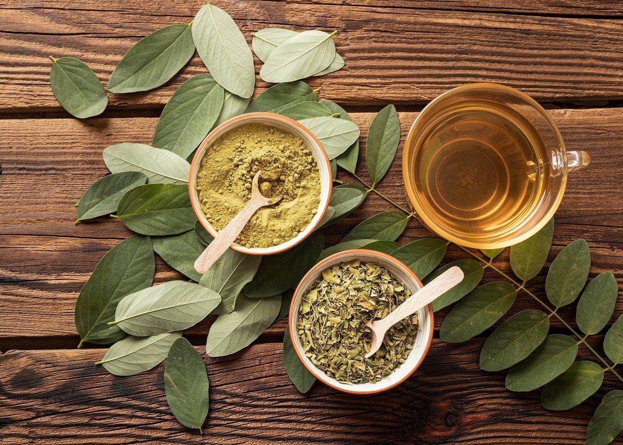 xícara de chá de moringa ao lado da folha fresca, seca e em pó