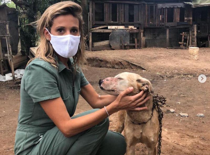 Na foto, aparece Luísa Sonza posando ao lado de um cachorro. Ela usa máscara branca de proteção.