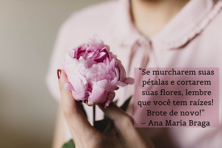 frase Ana Maria Braga