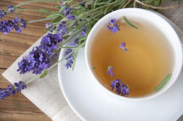 Lavanda ajuda a combater as cólicas menstruais