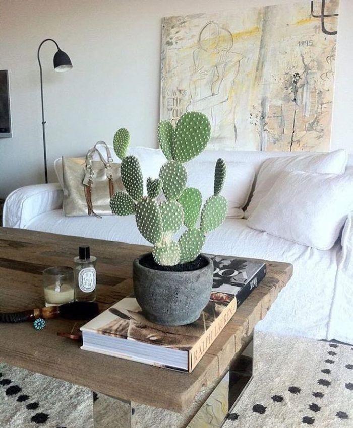 Mesa de centro com planta.