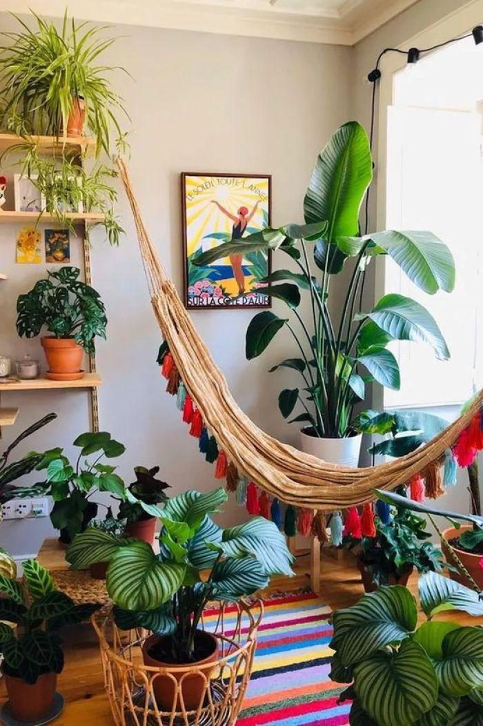 Por fim, plantas e rede na sala.