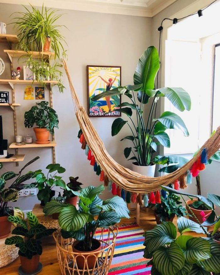 Casa com muitas plantas e boas energias.