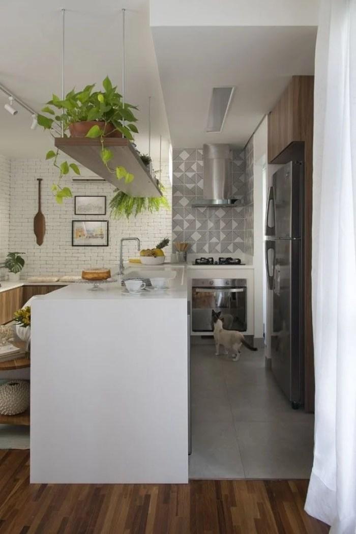 Cozinha pequena com plantas pendentes.