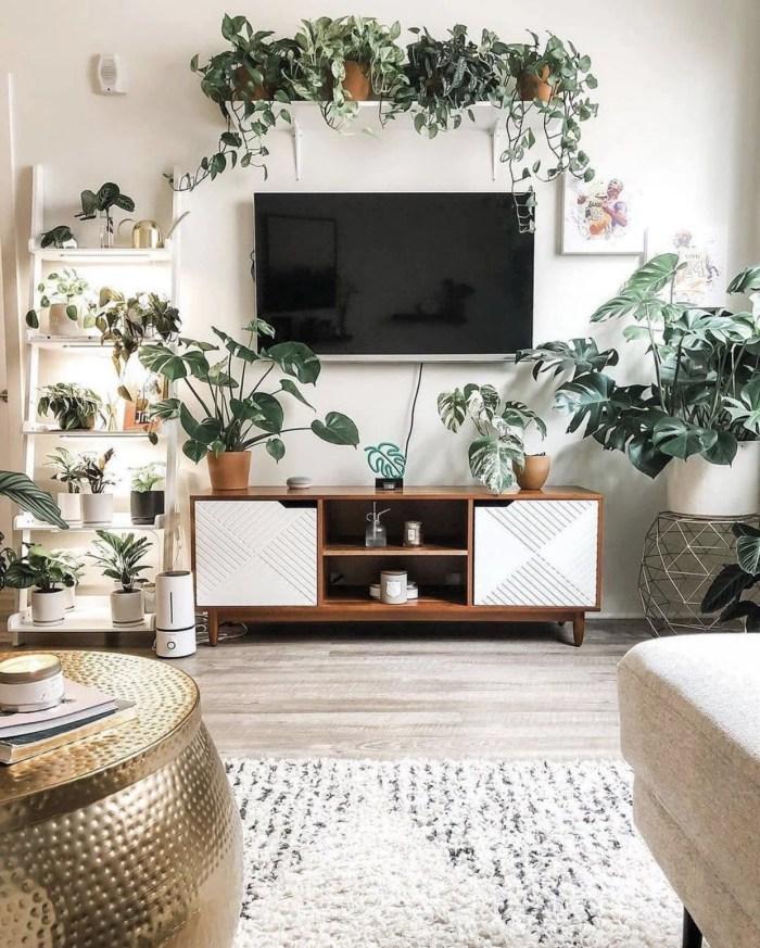 Sala de estar decorada com muitas plantas.