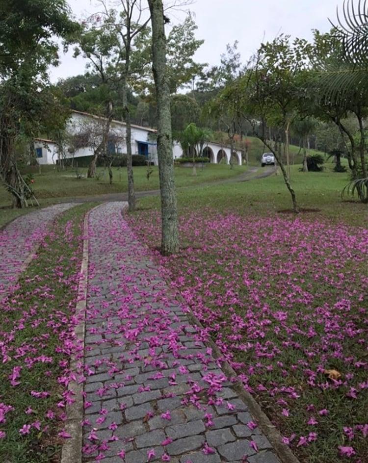 Foto da entrada do sítio de José Mayer em Guaratiba.