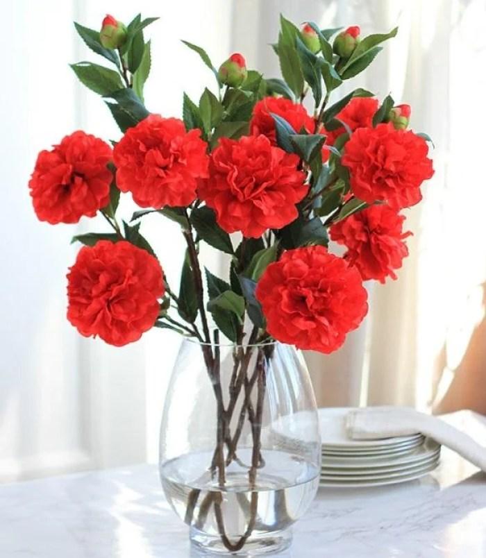 Flores que gostam de frio vermelhas.