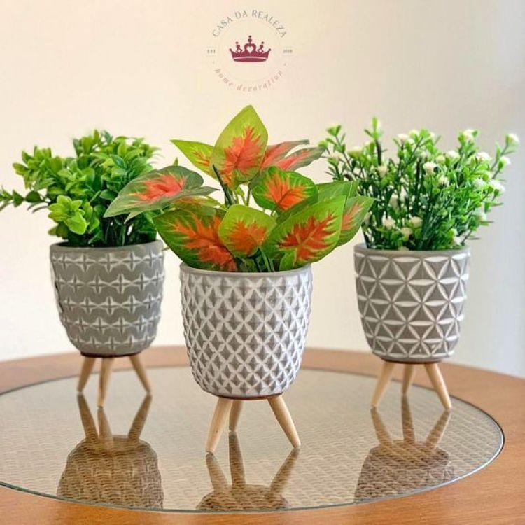 Três plantas pequenas.