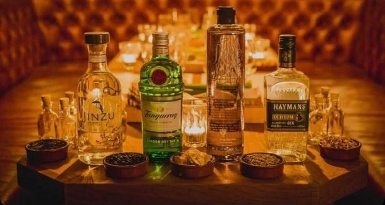 Os diferentes tipos de gin