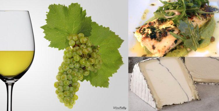 imagem de uma taça de vinho chardonnay com sugestão de harmonização com peixe grelhado ao molho de ervas e queijo macio