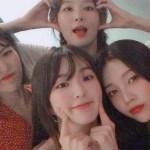V-Neck Mesh Black Cardigan  | Irene – Red Velvet