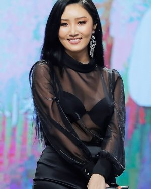 See through Semi Turtle Neck Blouse | Hwasa – Mamamoo