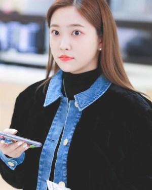 Velvet Polo Collar Jacket | Yeri – Red Velvet