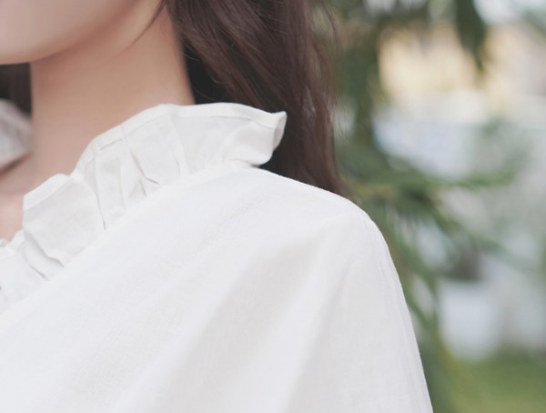 Ruffled V-neck Collar Chiffon Blouse