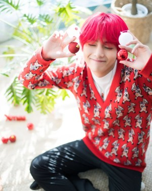Porky Red Long Sleeve Sweater | Taehyung – BTS