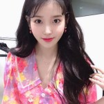 Pink Floral Chelsea Collar Dress | IU