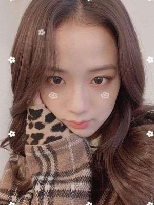 V-Neck Leopard Print Detailed Sweater | Jisoo – Blackpink