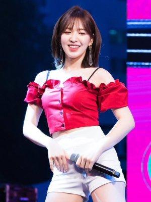 Red Lotus Leaf Short-Sleeved Top | Wendy – Red Velvet