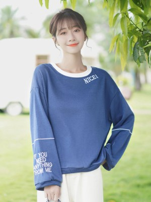 Nice Embroidered Blue Sweater (1)