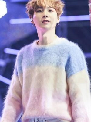 Pastel Gradient Mohair Sweater | Suga – BTS