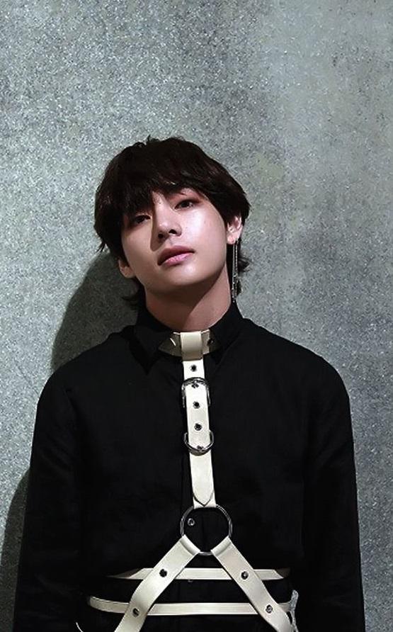 Long Linear Silver Earrings   Taehyung- BTS