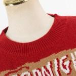 """Goodnight Mushroom"" Sweater | IU"