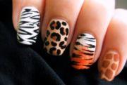 fashionable animal print nail art