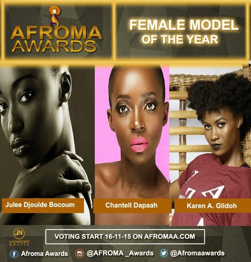 afroma awards (15)