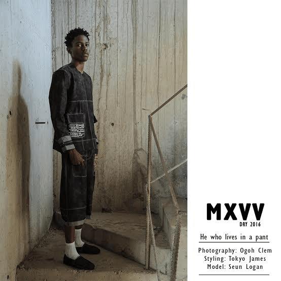 Maxivive_2016_2