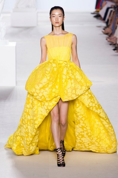 giambattista-valli-couture-fall-2013-39